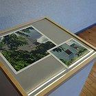 The work of Nobuko Hayashi 3